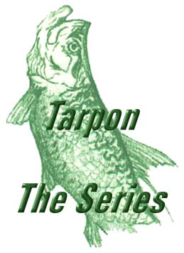 Florida fishing guide / charters on the saltwater flats and backcountry of Tampa , Tampa Bay, Clearwater, St. Petersburg, Orlando and Disney area. Light tackle and fly fishing for tarpon, ssnook, redfish and trout. Sport fishing charters Florida.